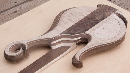 Custom bass with neck-thru design, quilte maple tops