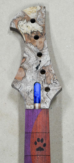 Inline bass headstock with a maple burl cap, dog paw inlay