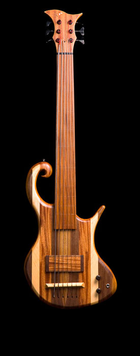 6 string fretless bass with EMG pickup.