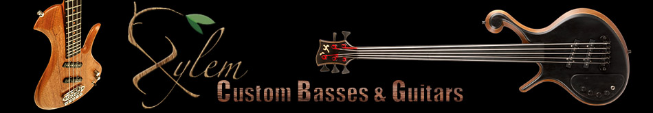 Xylem Custom Basses and Guitars